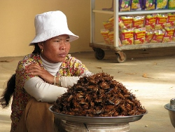 800px-Woman_vendor_deep_fried_crickets_Cambodia (250x188)