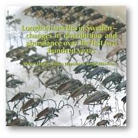 Longhornbeetles_200_DS