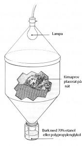 Tullgrens extraktor